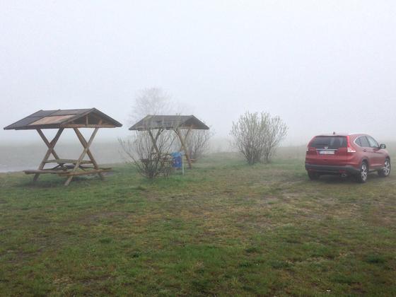 Der Dicke im Nebel