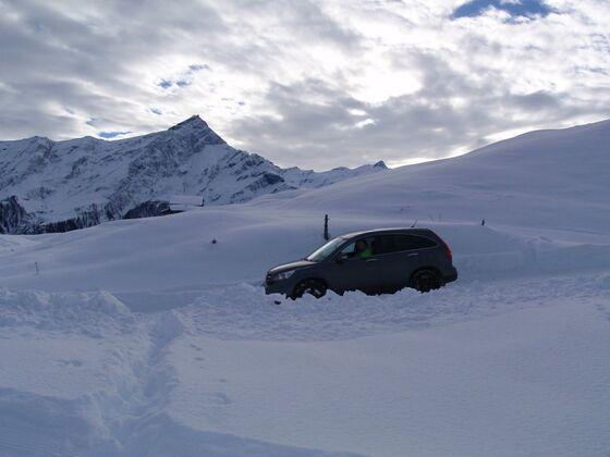 Der Dicke im Schnee 2